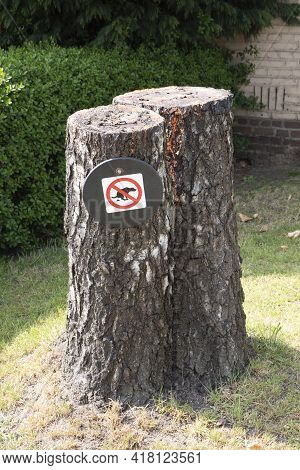 Sawed-off Tree Trunk With No Poop Sing For Dogs