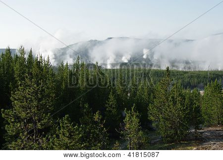 Yellowstone Geyers