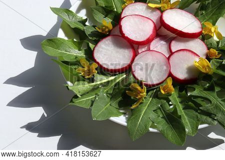 Healthy Organic Vegetarian Salad With Fresh Radish And Dandelion Leaves Decorated With Edible Yellow