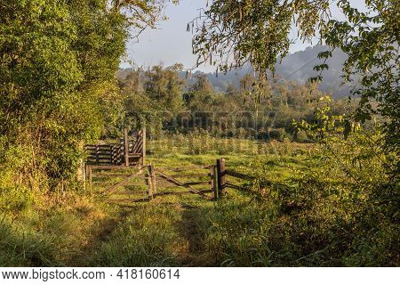Farm Gate And Field With Forest At Sunrise, Ivoti, Rio Grade Do Sul, Brazil