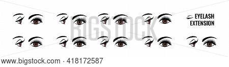 Eyelash Extension. False Lash Shape For Doll Look. Eye Style Infographic. Makeup Tutorial. Lengtheni