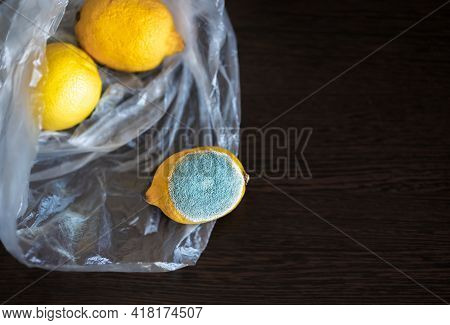 One Lemon With Light Blue Green Textured Mold, Another Two Lemons Are Normal, Ripe. Three Whole Yell