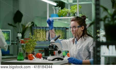 Biologist Scientist Looking At Test Sample Using Microscope