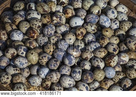 Quail Eggs For Sell At The Street Food Market In Burma, Myanmar. Close Up