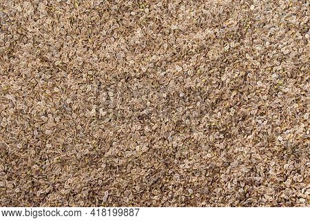 Dill Seeds Background Texture. Dill Seeds. Storage Of Dill Seeds. Aromatic Seasoning