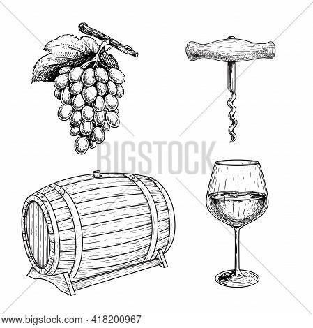 Wine Sketch Set. Grape, Corkscrew, Wine Barrel Or Cask And Glass Of Wine. Hand Drawn Vector Illustra