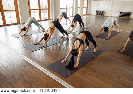 Young Sporty People Practicing Yoga Downward Dog Pose, Working Out. Fitness Class, Sport And Healthy