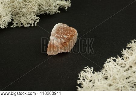 Halite Or Rock Salt From Pakistan. Natural Mineral Stone On A Black Background Surrounded By Moss. M