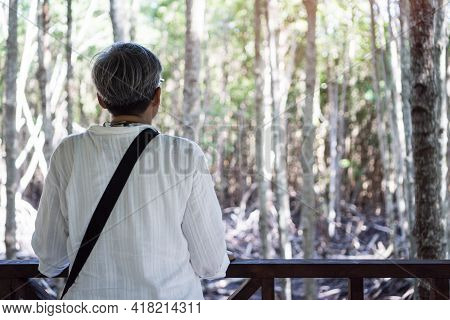 Asian Older Woman Standing Alone Outdoor In Green Forest Jungle Of Mangrove Trees Traveler Feeling L