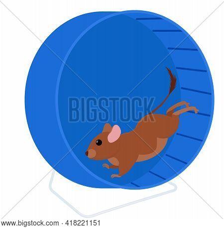 Degu Running In Wheel Isolated On White. Cartoon Pet Degus, Brush-tailed Rat Vector Illustration.