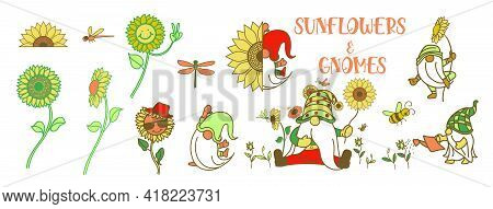 Gnomes With Sunflower, Summer Gnomes, Drawing Of Gnomes With Many Activities And Sunflower, Colorful