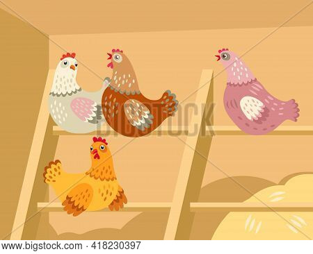 Cute Cartoon Hens In Barn. Group Of Chickens Sitting In Henhouse Flat Vector Illustration. Countrysi