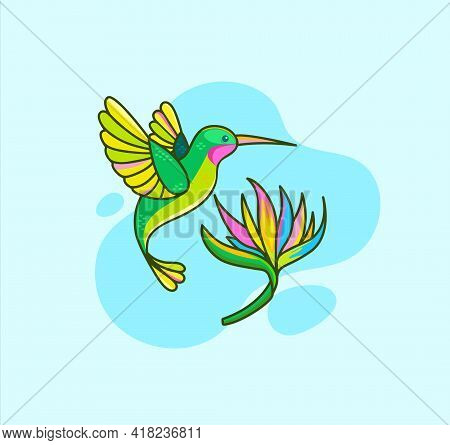 Funny Colorful Hummingbird Flying Near Tropical Flower On Blue Background.colibri For Design Birthda