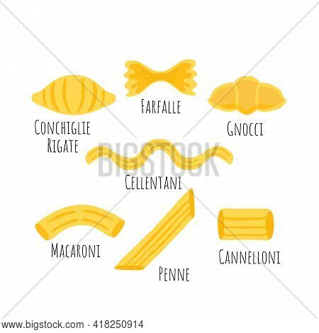 Set With Common Seven Italian Pasta Types. One Conchiglie Rigate, Farfalle, Gnocci, Cellentani, Maca