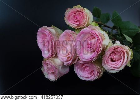 A Delicate Bouquet Of Beautiful Roses On A Black Background. A Declaration Of Love