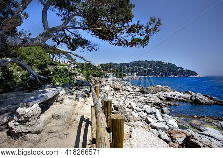 Calella De Palafrugell, Spain, May 1, 2020 - Idyllic View Of Costa Brava. Pine Trees, Rocks And Sea