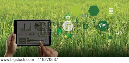 Agriculture Technology Concept Man Agronomist Using A Tablet In An Agriculture Field Read A Report I