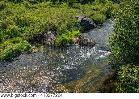 Scenic Green Landscape With Algae In Clear Water Of Mountain Stream. Green Nature Background With Wa