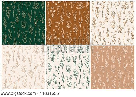 Wildflower Seamless Pattern Set With Outline Florals. Retro Style Print Design Collection With Hand