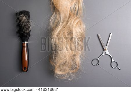 Hairdresser Professional Thinning Scissors Or Shears And Hairbrush With Matted Curl Of Blonde Hair O