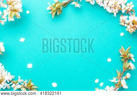 Spring Border, Spring Blossom And April Floral Nature On Blue Background. Branches Of Blossoming Apr