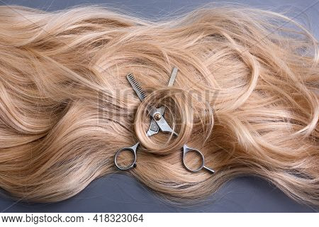 Hairdresser Professional Thinning Scissors Or Shears With Blonde Curly Hair On Grey Background. Beau
