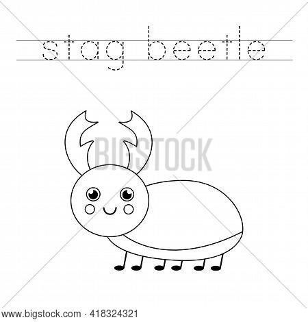 Trace The Word. Cute Stag Beetle. Handwriting Practice For Preschool Kids.