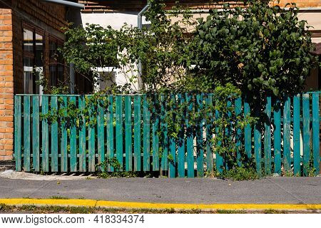 The Old Weathered Wooden Green Fence Near Residential Homes