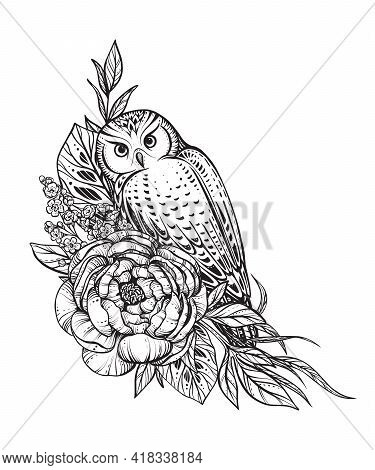 Vector Illustration Of Black And White Owl, Peony Flowers, Branches Isolated On White Background. My