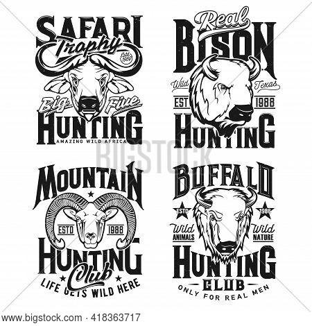 Bison, Bighorn Sheep Ram And Cape Buffalo Hunting T-shirt Vector Prints. Trophy Hunting Club Mascot,