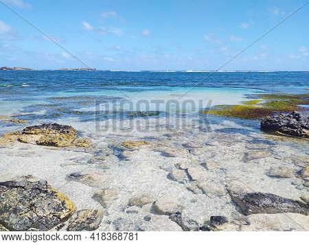 Turquoise Waters Landscape. Shore Of The Caribbean Sea. Tropical Nature Of The French West Indies.
