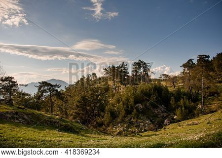 Magnificent View Of Green Valley With Evergreen Coniferous Trees And Sky With Clouds At Background
