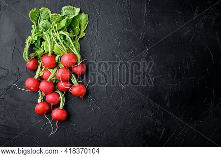Bunch Of Radishes. Freshly Harvested, Purple Colorful Radish. Growing Radish. Growing Vegetables. He
