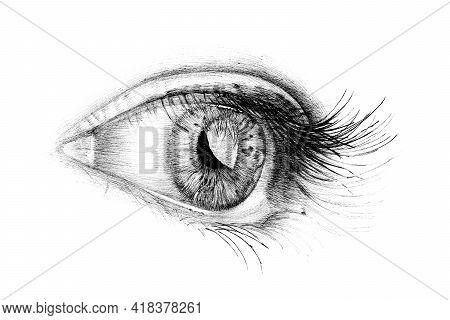 Hand Drawn People Eye, Sketch Graphics Monochrome Illustration On White Background (originals, No Tr