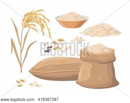 Sack Of Rice, Rice Heap, Plant, Rice In Bowl. Harvest Concept. Vector Illustrations Set Isolated On