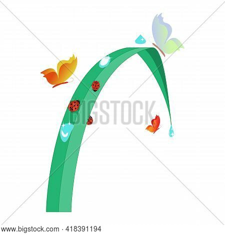 Ladybird And Butterflies In Leaf On White. Cute Colorful Sign Red Insect Symbol Spring, Summer, Gard