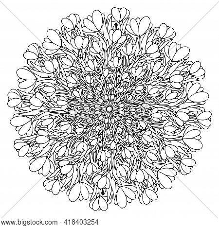 Crocus Flowers And Leaves Hand-drawn Mandala Stock Vector Illustration. Blossom Flowers Black Outlin