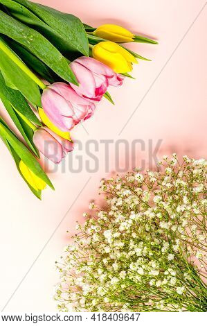 Fresh Pink And Yellow Tulip Flowers On On Pastel Pink