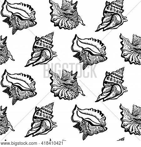 Marine Fauna Shell Seashell Live Line Style Hand Drawn Black Ink Seamless Pattern. Amazing Inhabitan