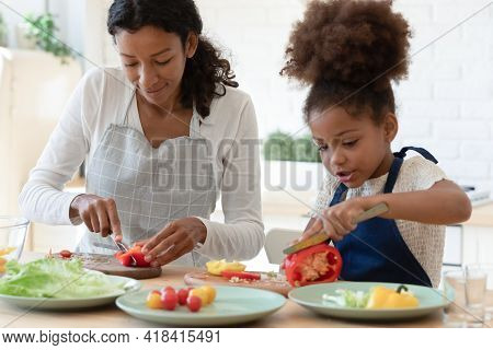 Happy Mommy And Cute Daughter Girl In Aprons Cooking Together
