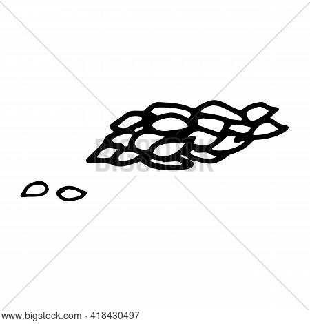Grain.contour Grain Crop Ear. Outline Isolated Icons. Hand Drawn Vector Illustration For Logo, Print