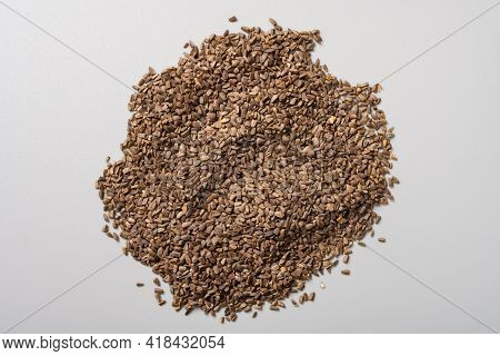 Top View Herb Cheqianzi Or Plantaginis Semen Or Asiatic Plantain Seed