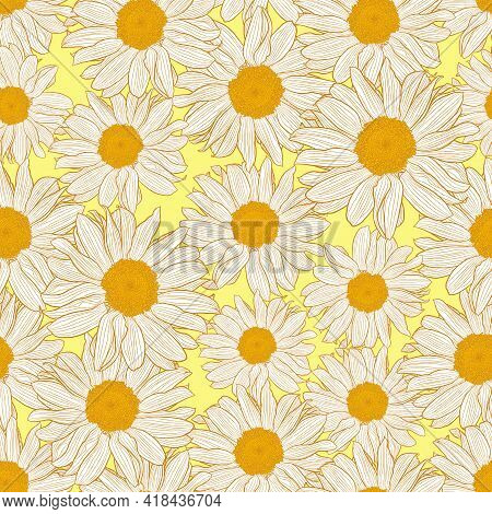 Vector Seamless Pattern Of Orange And White Chamomile Flowers On Light Yellow Background. Decorative