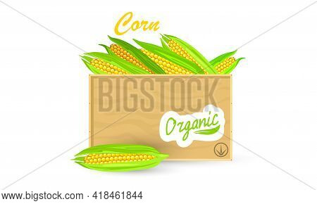 Cartoon Of Raw Vegetable From Farm, Natural Product In Crate, Organic Crop. Vector Vegan, Dietary, S