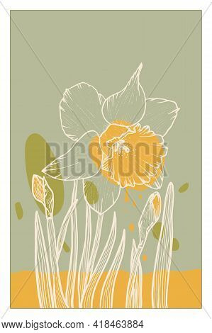 Abstract Line Art Of Daffodil Flower With Color Splats. Daffodil Contour Drawing. Minimal Flower Ill