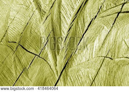 Part Of Wood Curving On Oak In Yellow Tone. Natural Background And Texture.