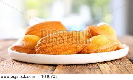 madeleine cake on wood background