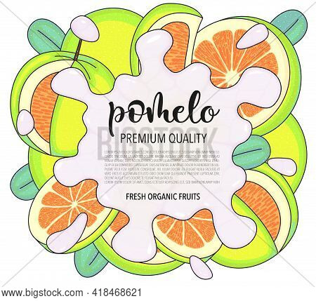 Vector Background With Pomelo, Whole And Pieces - Vector Stock Illustration Isolated On White Backgr