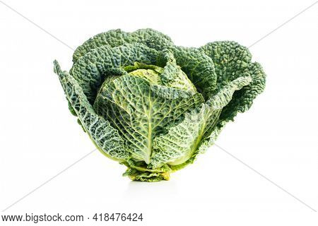 Green savoy cabbage isolated on white background.