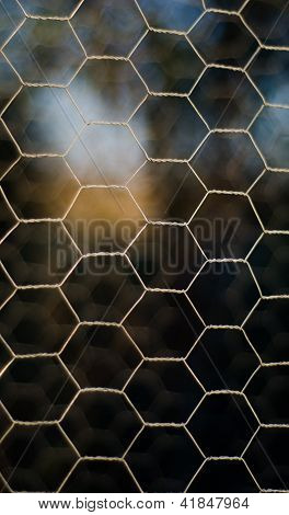 Hexagonal steel wire fence from a garden poster